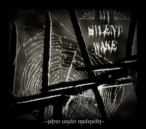 Silver Under Midnight